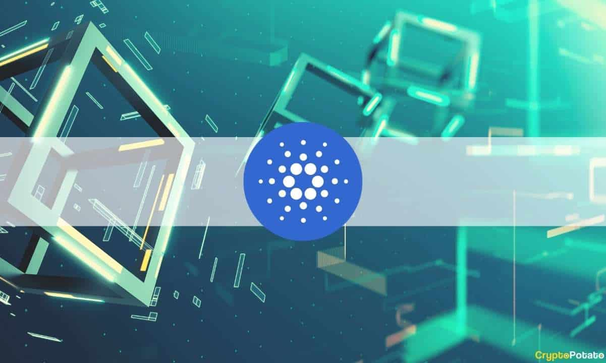 AgeUSD to Launch as First Stablecoin on Cardano Network