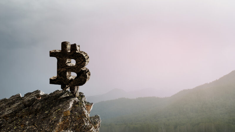 Microstrategy CEO Advises Nigeria and Zimbabwe to Adopt Bitcoin Standard, Says BTC Is 'Kingmaker'
